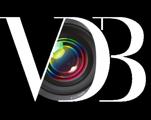 Logo-VDB