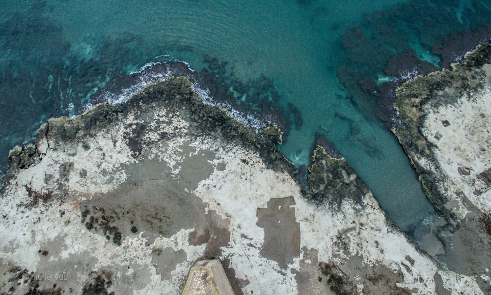 Verticale au bord de l'eau à Cabo cope (espagne, costa brava).